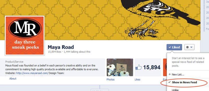 Maya Road News feed1