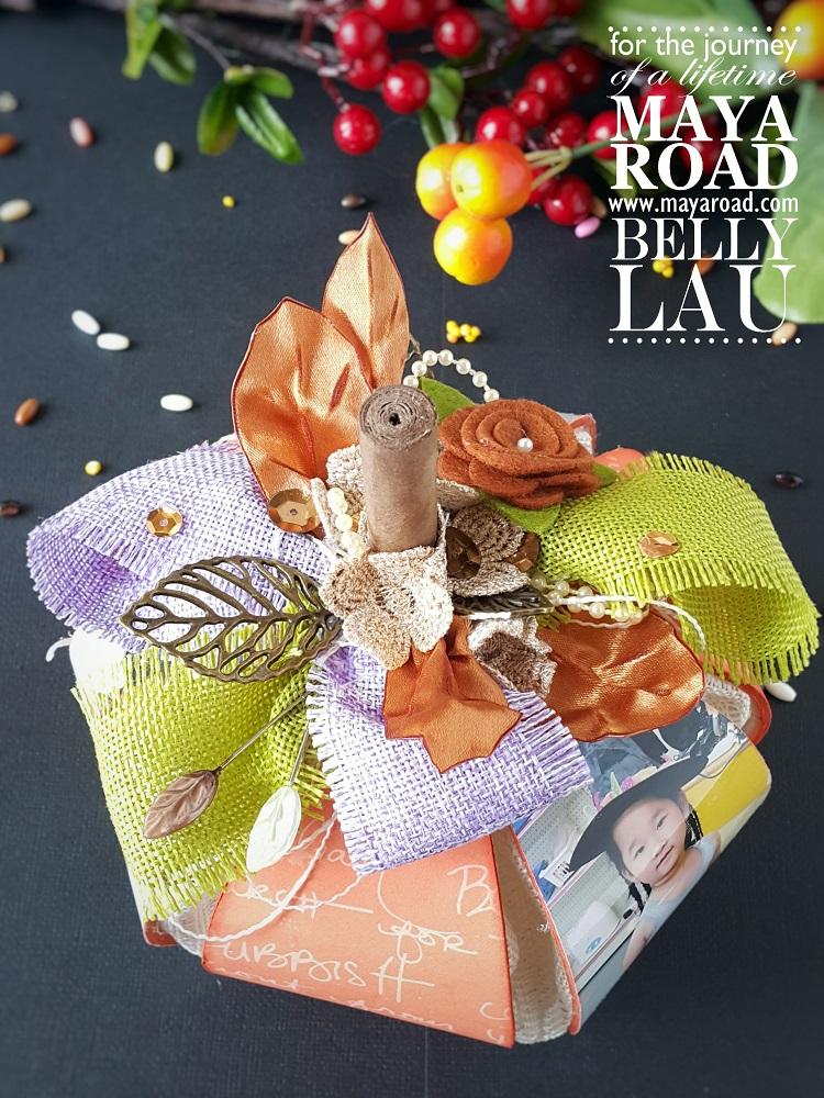 Pumpkin Photo Display - Maya Road - Belly Lau - 2